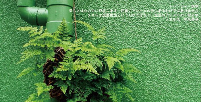 proimages/dm/擦手巾日.jpg
