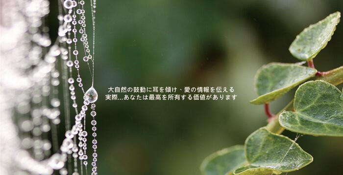 proimages/dm/禮盒日.jpg