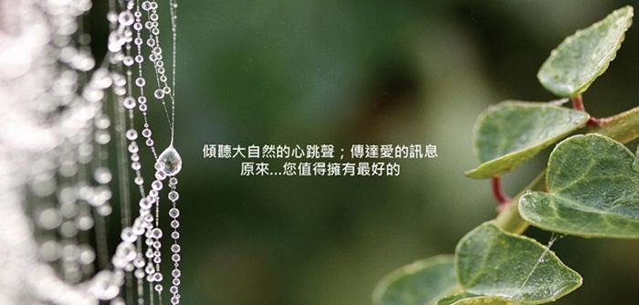 proimages/dm/禮盒2.jpg
